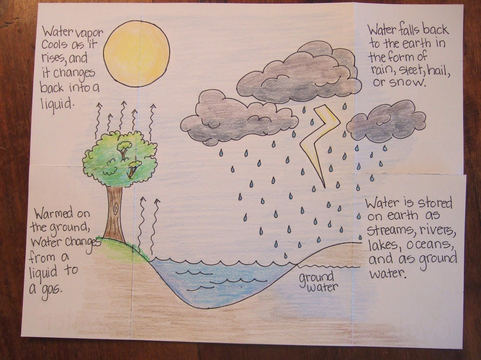 Inside Of Water Cycle Foldable