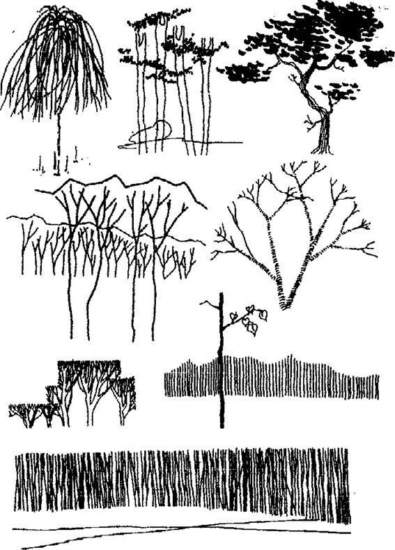 Научиться рисовать тушью