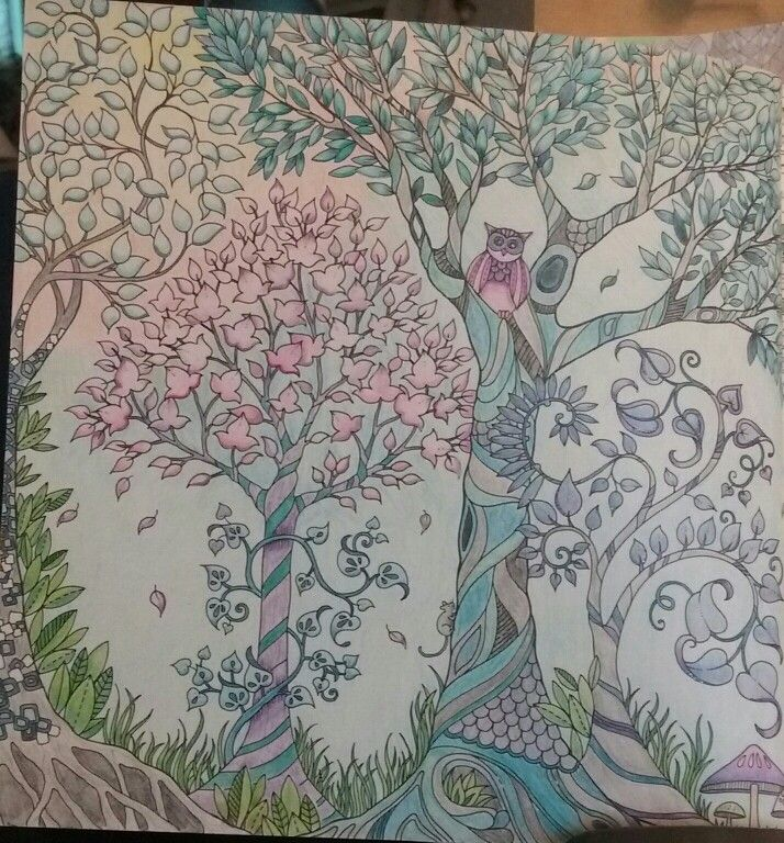 Johanna Basford Enchanted Forest Used Staedtler Noris Club Pencils Not Yet Complet Still Have The 2nd Page Of This Picture Colored By S Field
