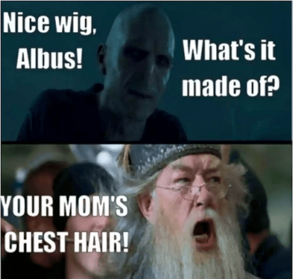 Harry Potter Memes Even Muggles Will Like 47 Pics Daily Lol Pics Harry Potter Memes Hilarious Harry Potter Quotes Funny Funny Memes About Girls