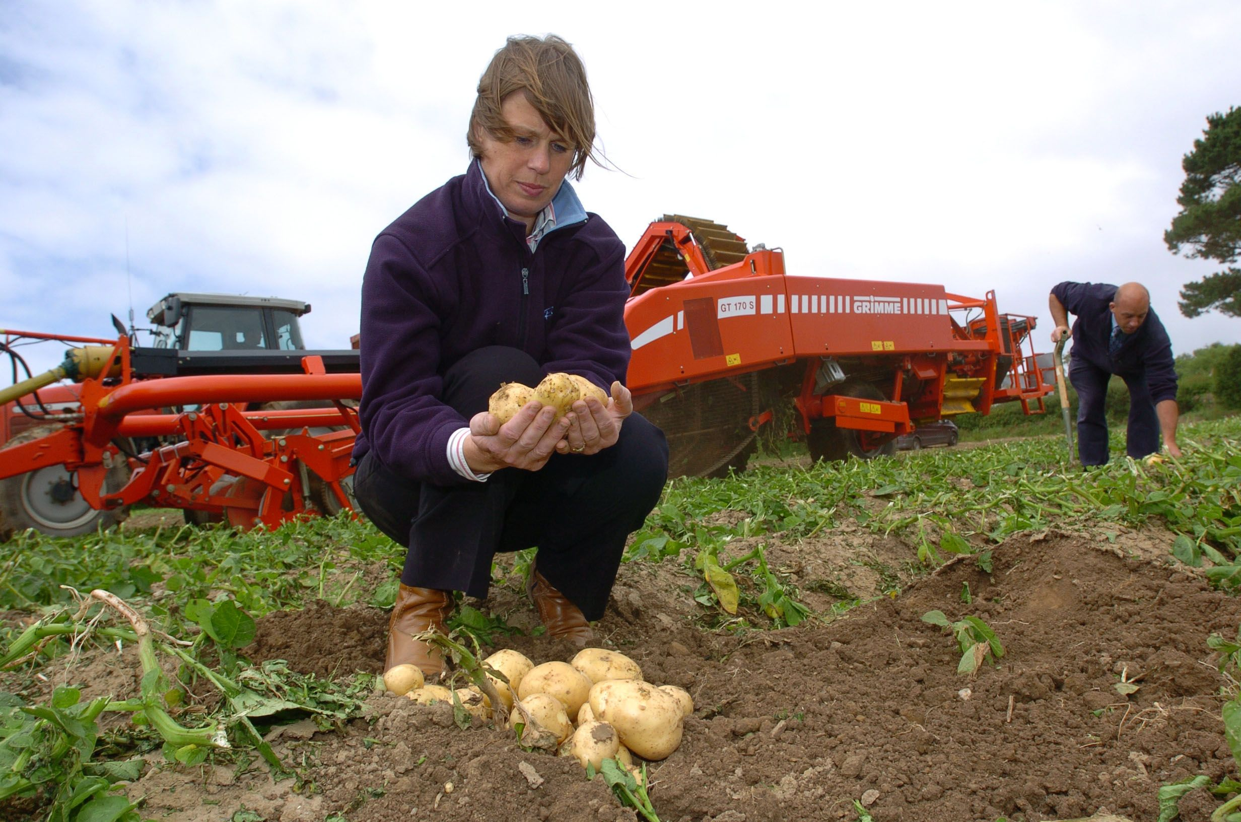 Learning All About Potato Farming