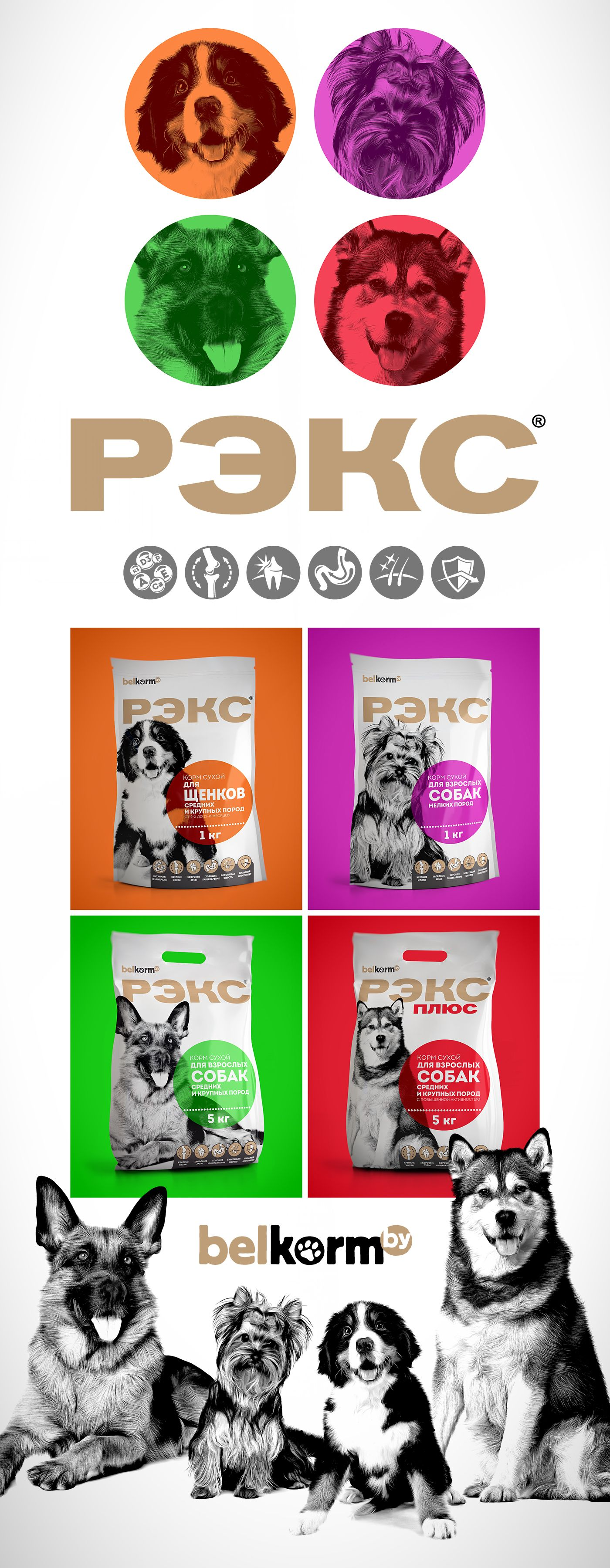 REX dog food packaging on Behance Dog food recipes, Food