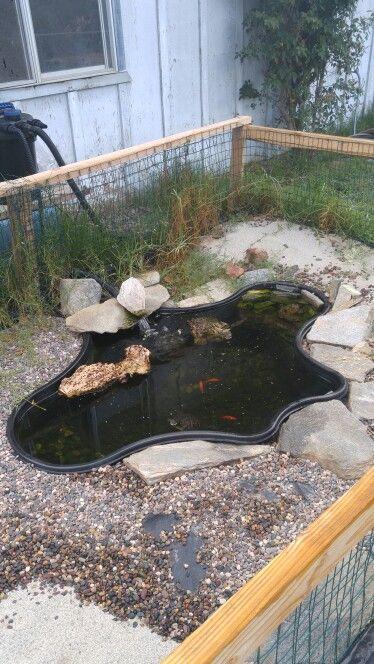 Our turtle pond   Outdoor decor, Bird bath, Turtle pond