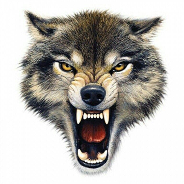 козы силам картинки смайликов волки сразу назвали шедевром