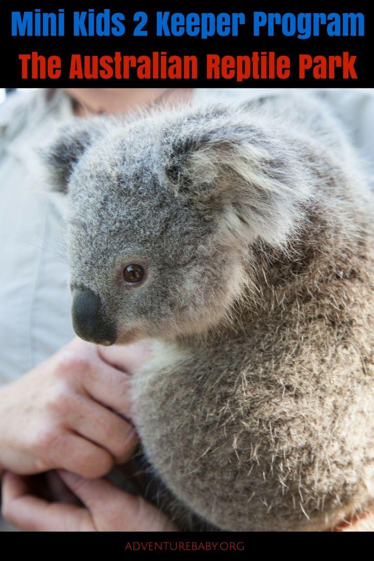 Australian Reptile Park Mini Kids 2 Keeper Experience