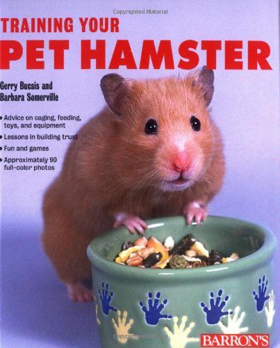 10 Secrets to Raising a Healthy, Happy Dwarf Hamster (With