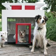 Modern Style Dog House - Totally Useless BUT Cool