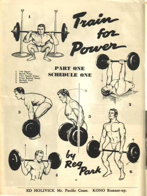 The Real Arnold Schwarzenegger Beginner Programs ...