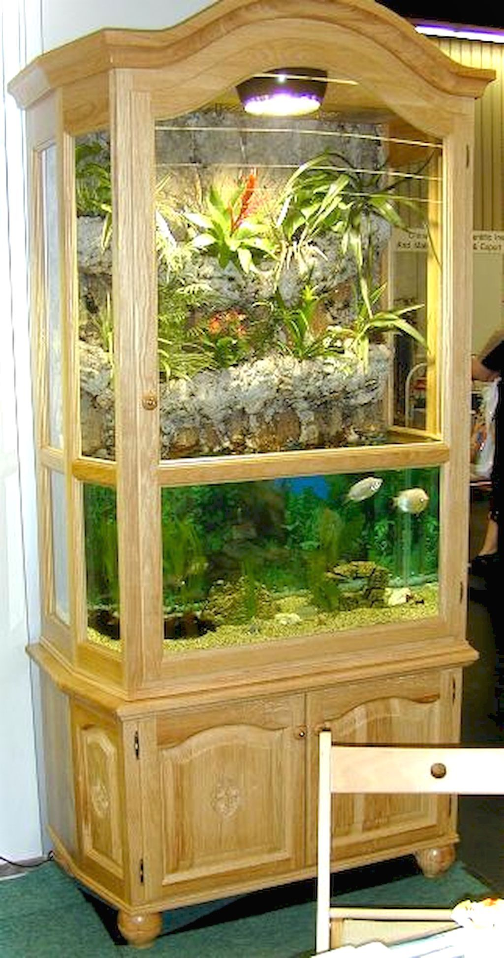 Diy Terrarium Stand Pin By Cindy Austin On Freshwater Aquarium Freshwater