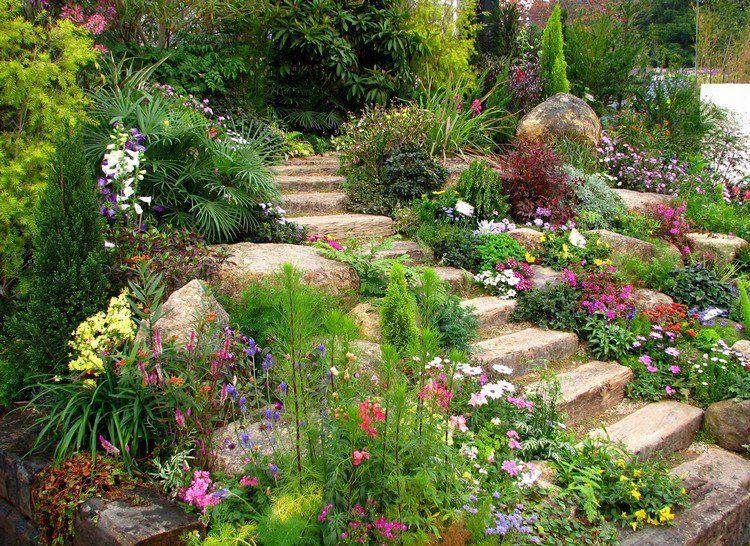 jardin de rocaille avec des fleurs colorées et escalier extérieur en ...