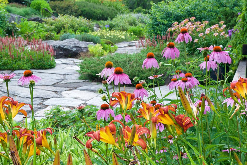 Creating Pollinator-Friendly Gardens - New Hampshire Home ...