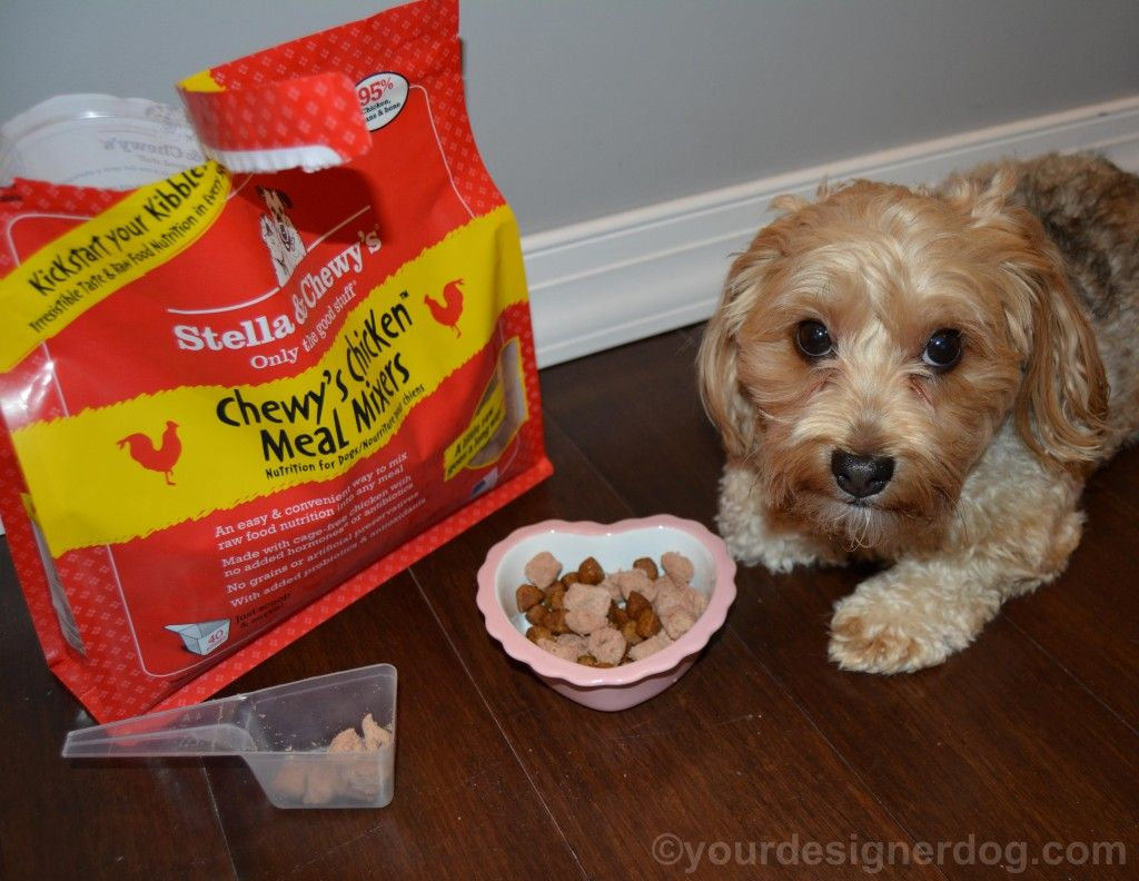 Kickstartyourkibble with stella chewys meal mixers