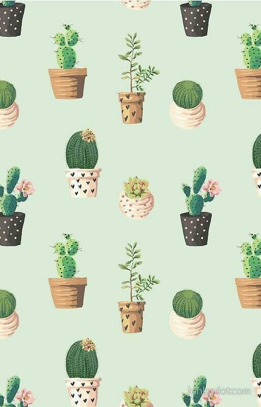 Pin by phakwuayy on Cactus Lockscreens Iphone wallpaper