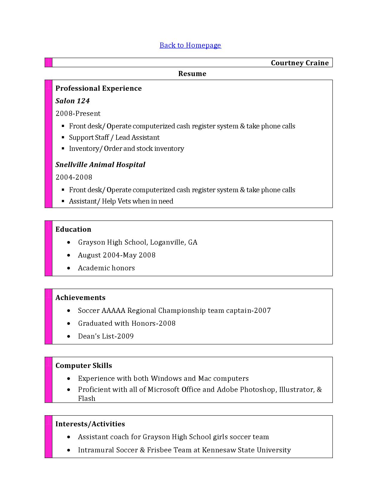 Resume Computer Skills Example Listing Computer Skills On Resume