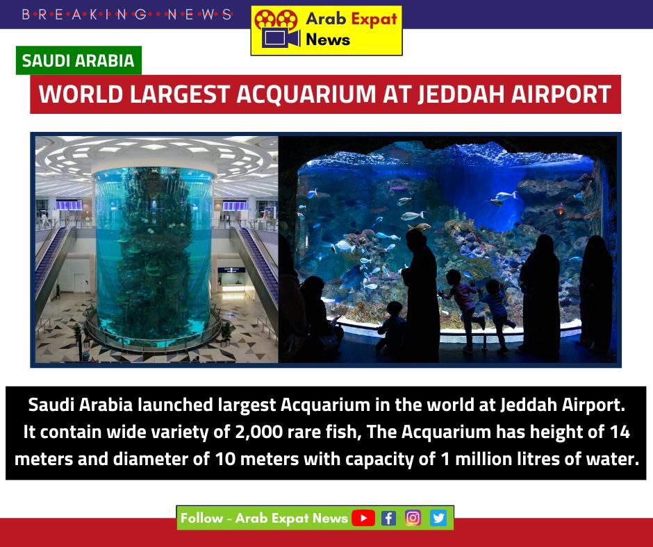 Jeddah Airport Acquarim I Saudi News Jeddah Product Launch Rare Fish