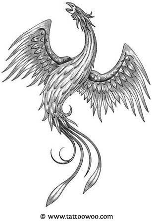 Phoenix Tattoos On My Shoulder Phoenix Tattoo Phoenix Tattoo Design Japanese Phoenix Tattoo