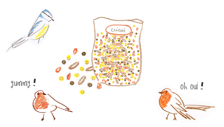 Comment fabriquer rapidement des boules de graines pour les oiseaux