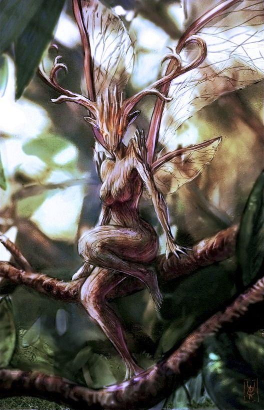 Wood fae      Half fairy/spriggan                                                   …