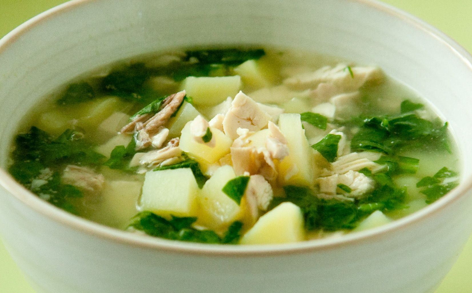 2 Cups Homemade Hcg Chicken Broth 100 G Chicken Breast Cut Up Into