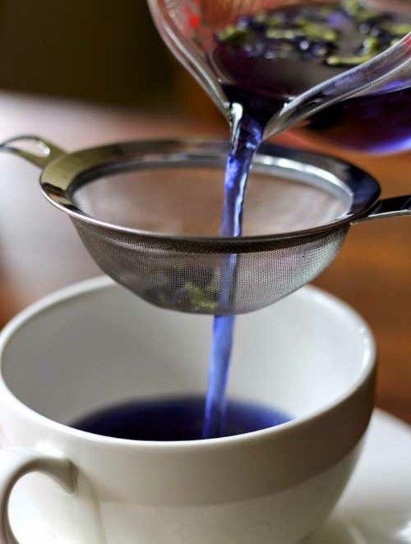 Ein cooles blaues Getränk gefällig? Hier kommt der Butterfly Pea Tea!