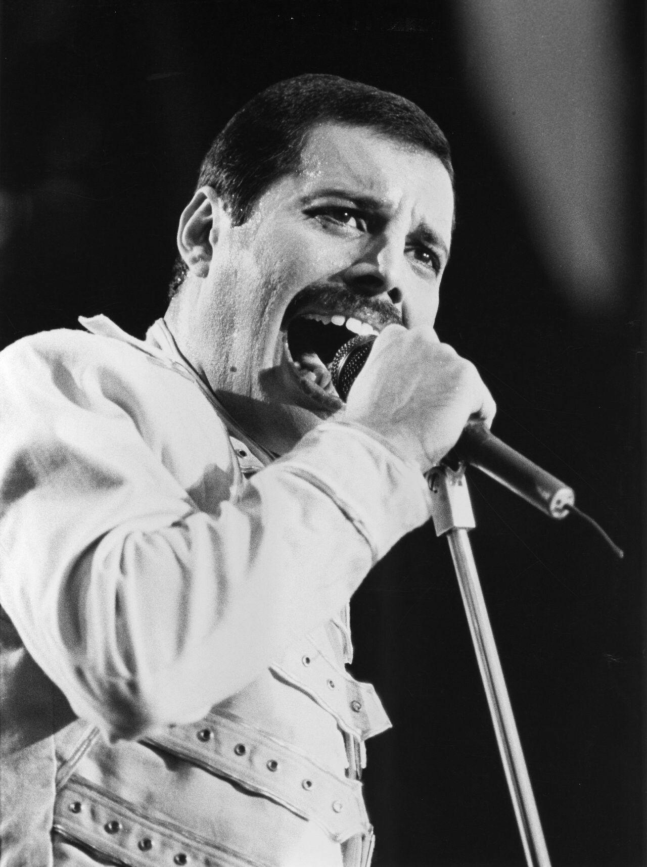 Freddie Mercury Queen Mercury May Taylor Deacon