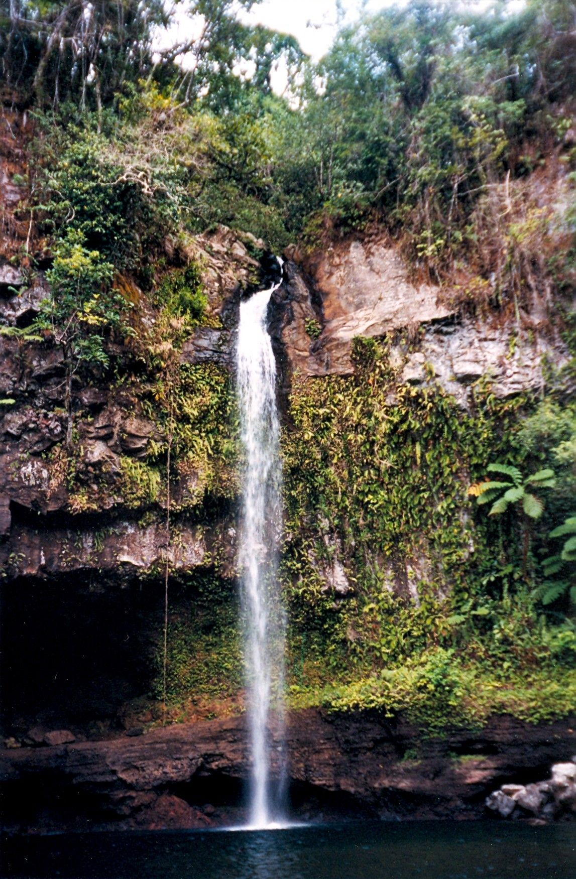 Bouma Falls Taveuni Island Fiji This Hike Was The Most