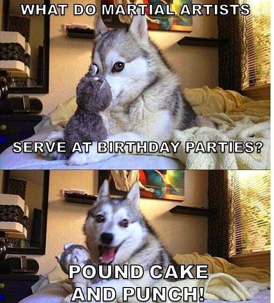 Happy Monday Martialartshumor Motivationmonday Monday Birthdayparties Poundcake Punch Martialarts Lead Funny Animal Jokes Funny Dog Jokes Dog Jokes