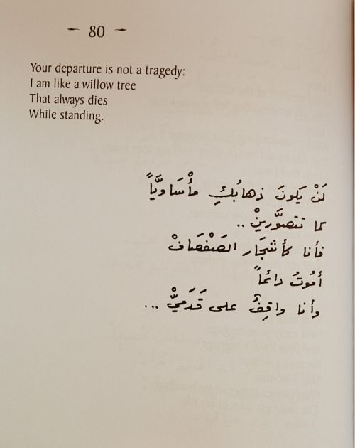Romantic Nizar Qabbani Quotes 40 Quotes