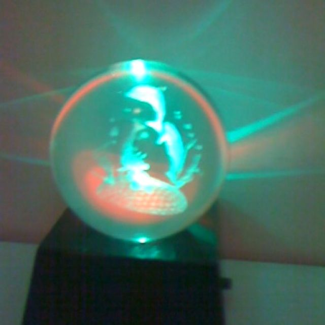 Light up dolphin globe thing!!!