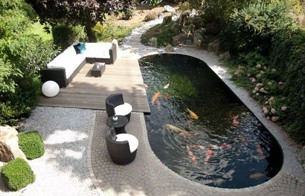 Modern koi pond google search koi fish koi ponds for Contemporary koi pond design