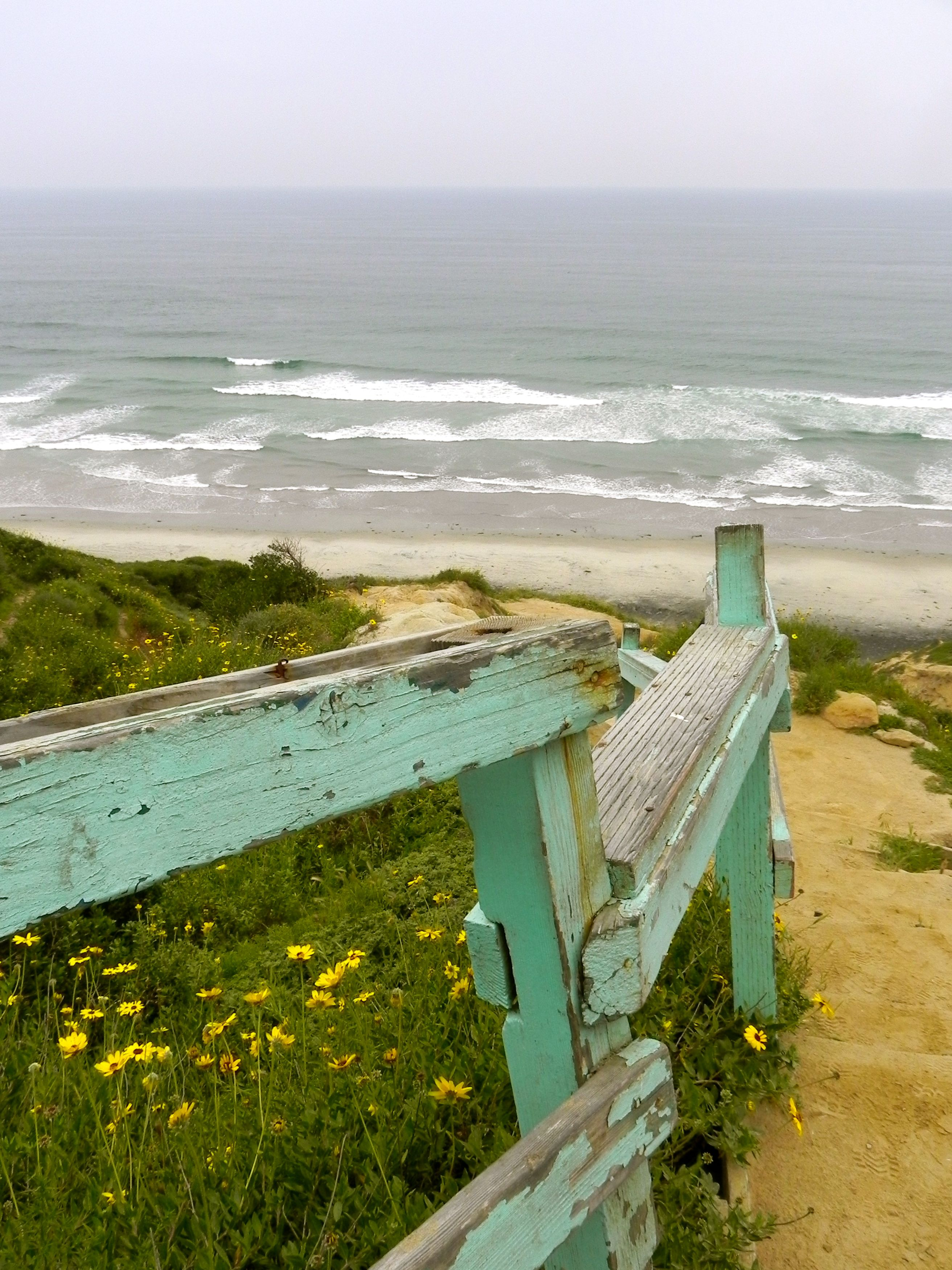 Down to Black's Beach at Torrey Pines