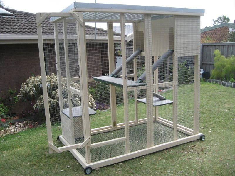 The PLAYPEN is an ideal enclosure for 12 cats It features