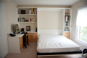 Nice small apartment/room layout with a murphy bed and desk