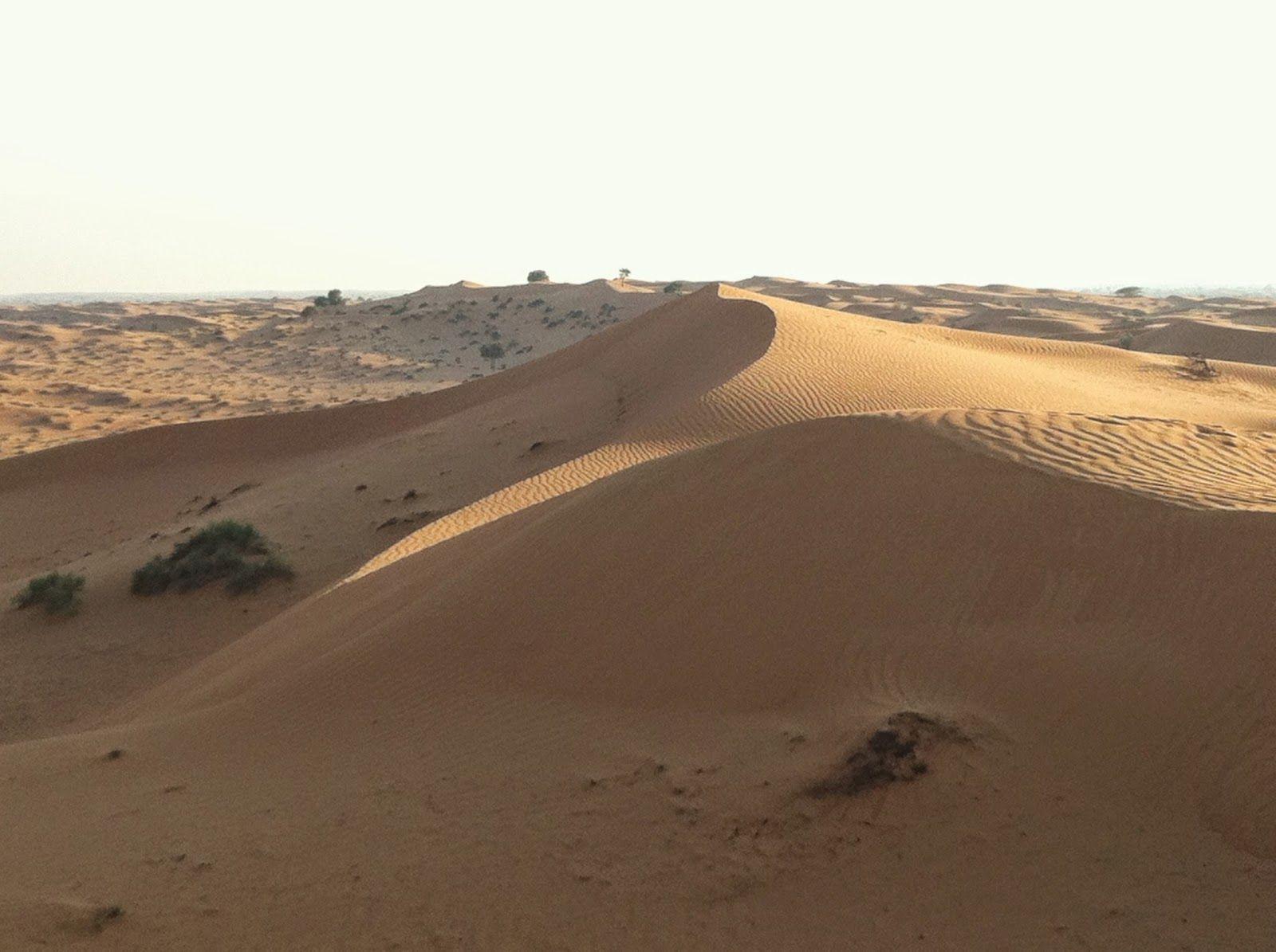 It felt good to be out of the rain – Wüstensafari in den arabischen Emiraten ~ Snippets of a Traveller