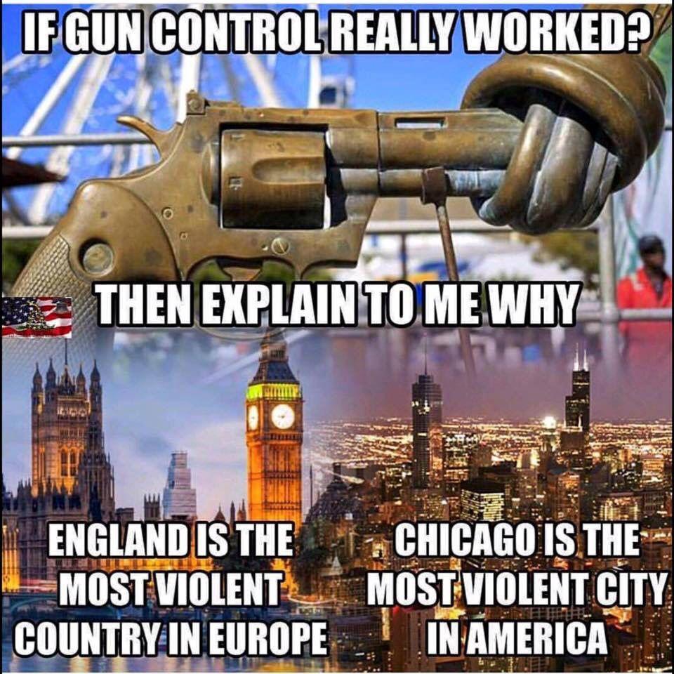 Overview of the Gun Control Debate