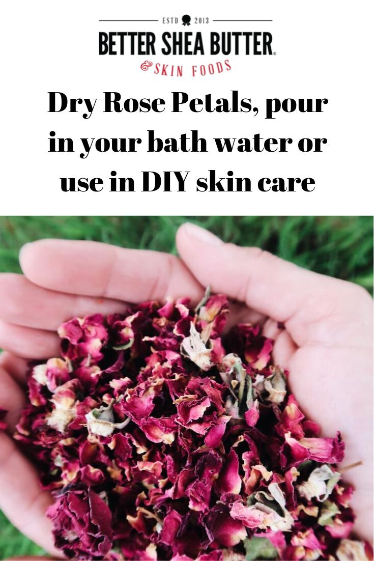 Dry Rose Petals Dried rose petals, Rose petals, Diy skin