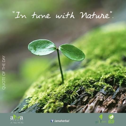 "Protect Nature Quotes: Quoteoftheday‬: ""In Tune With Nature"" Stay With Us"
