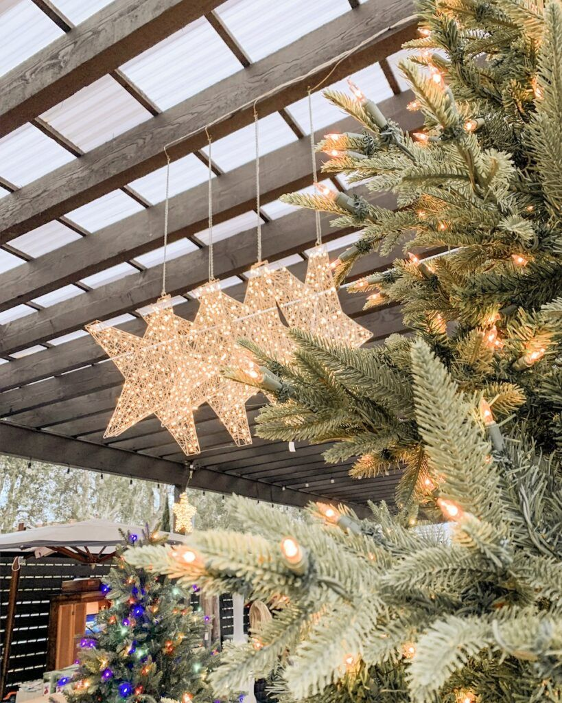 89fb61fba0c64d652054eed4ac15123c - When Does Rogers Gardens Decorated For Christmas