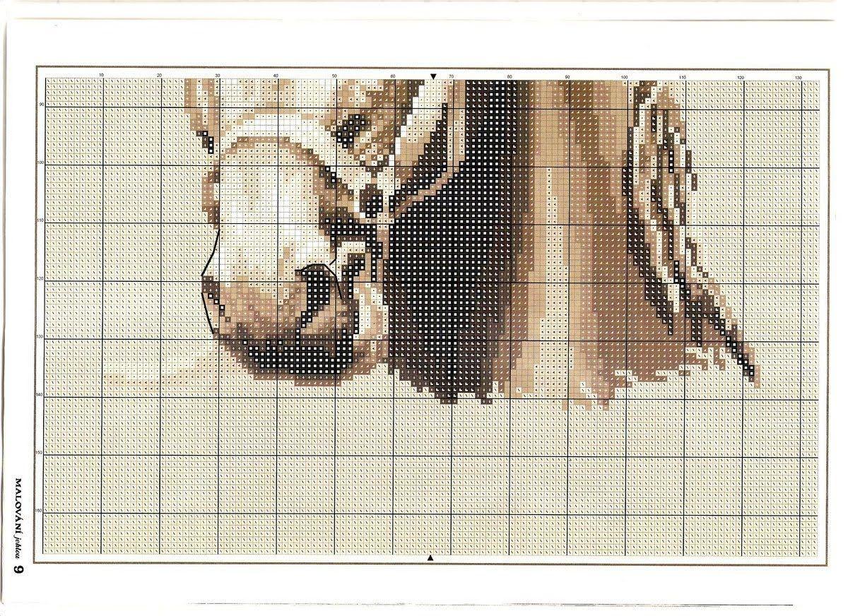 CABALLO-ESTRELLA-2.jpg (1200×872) | punto X | Pinterest | Graficos ...