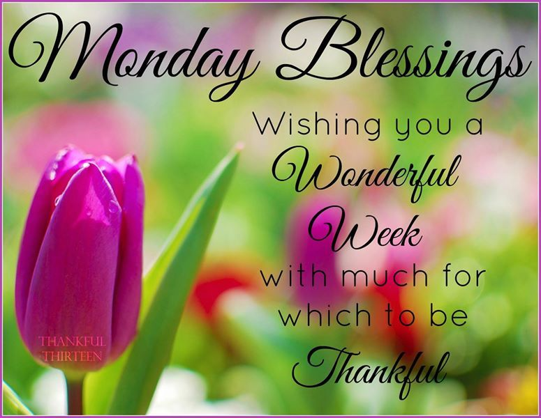 Good Morning Monday Quotes Endearing Wishing You A Happy Blessed