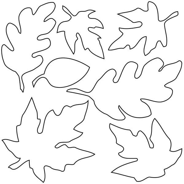 Various Type Of Maple Leaf Coloring Page