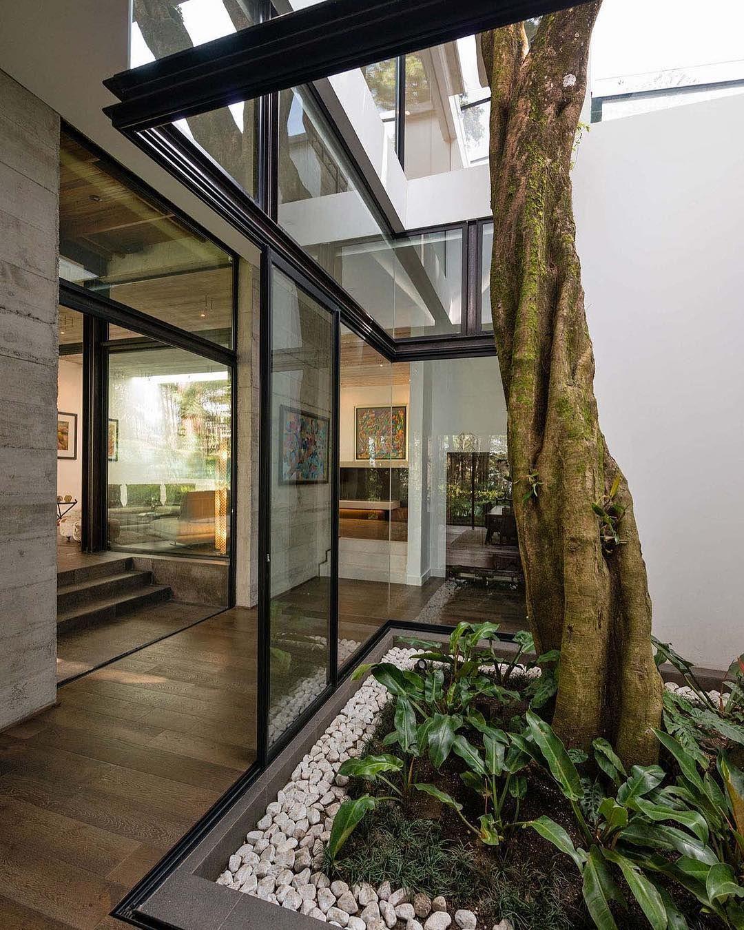 ʀᴇsᴛʟᴇss ᴀʀᴄʜɪᴛᴇᴄᴛᴜʀᴇ tree in middle of house Patio