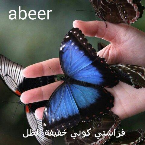 سيدتي تري فراشتها الجميلة تجوب في كل مكان مبسوطة وسعيدة ليس هناك قيود عليها حتي وجدت نفسها ضمن مجموعة من الفراشات نعم ه Blue Butterfly Butterfly Animals