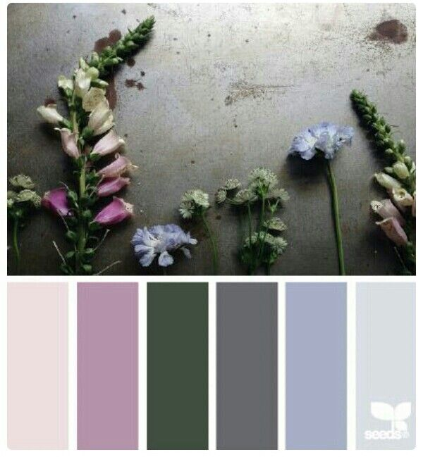 Color Theory Interiordesign: Pin By Ronda Fouad On Colours