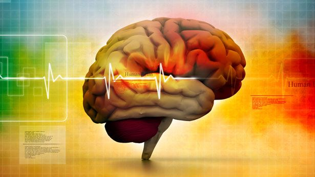 Human Intelligence Is Slowly Declining According To Leading Geneticist