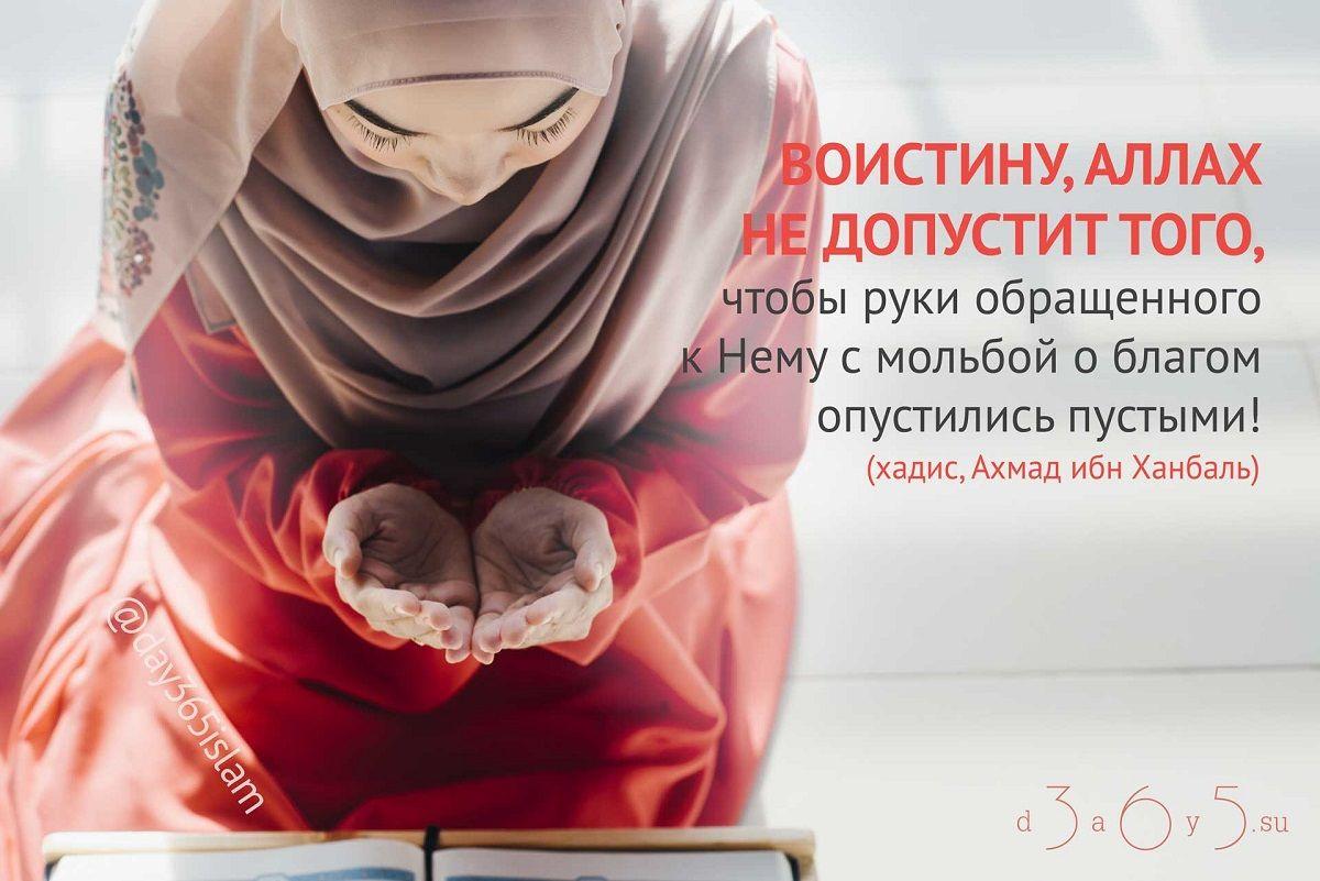 Хадисы и наставления в картинках