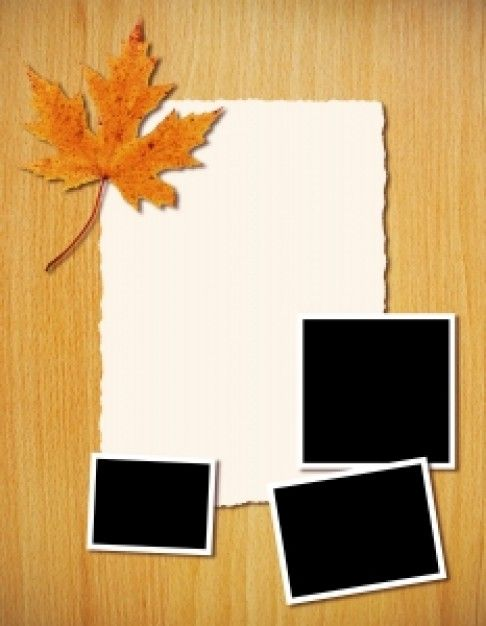 Fall Flyer  Flyer