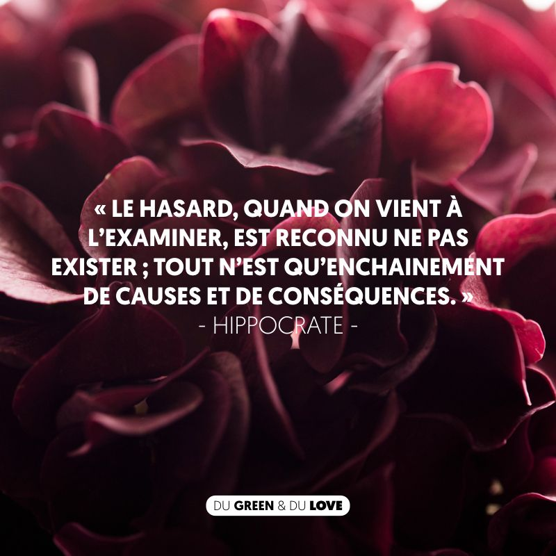 Citation Hippocrate Naturopathie Proverbes Et Citations