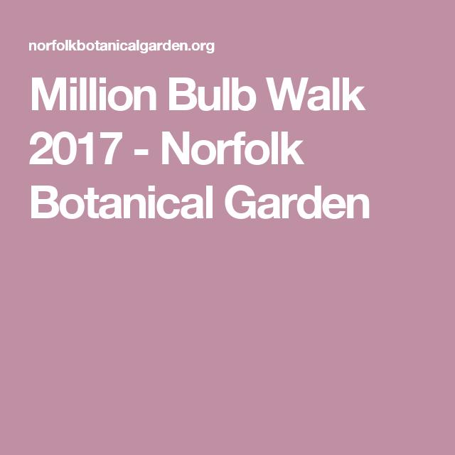 Million Bulb Walk 2017 Norfolk Botanical Garden Xmas Ideas Pinterest Norfolk Bulbs And
