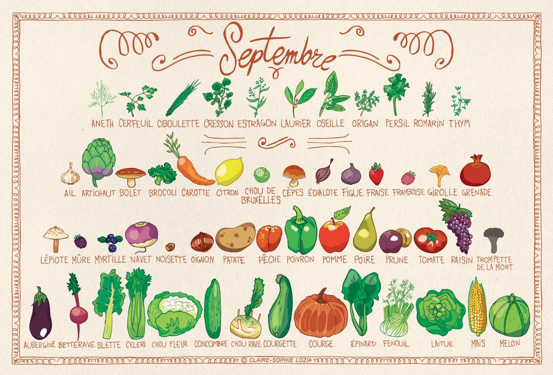 Calendrier de fruits et l gumes de saison du mois de - Calendrier fruits et legumes de saison ...
